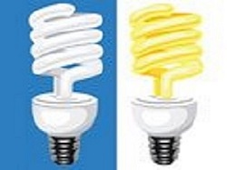Compact Fluorescent Light (CFL) Bulbs